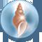 Concha de Anhidrita